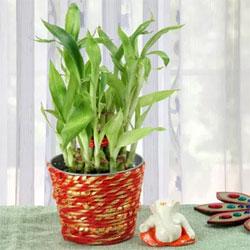 Two Layer Bamboo 5 Inches Ceramic Ganpati Idol 2x2 Inches