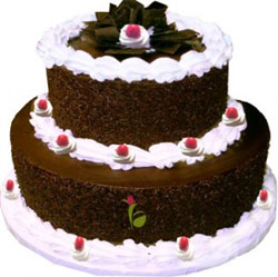 3 Kg Chocolate Cake, than this 2-tier arrangement freshly prepared by the best bakers. Suitable for grand Occasions like special Birthday, Wedding, etc, Cakes to Bangalore