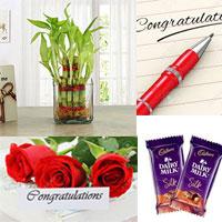 Congratulation Greeting card + Good Luck Bamboo plant. Congratulation pen+ 2 pieces. Cadburys Dairy Milk Silk