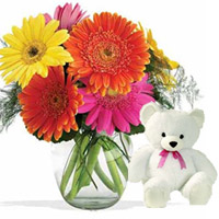 10 Mixed Gerbers vase with small teddy Bear