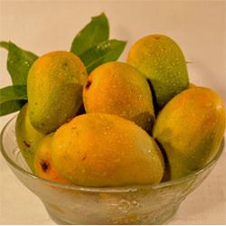 10 nos Fresh Nuziveedu chinna rasaalu mangoes