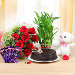 Half Kg Chocolate Cake  Ten Red Roses bunch  6-Inch Teddy  Five Dairy Milk Chocolates ( 10 Rs each )  Two Layer Bamboo Plant