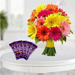 This exclusive gift hamper consists of a bouquet of 10 mixed gerberas and with Cadbury Dairy Milk Chocolate 12 gms (5 units)