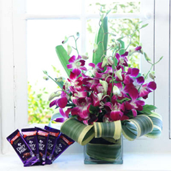 A delight to the senses, this gift comprises of gorgeous 6 purple orchids basket 5 bars of Cadbury Dairy Milk chocolate