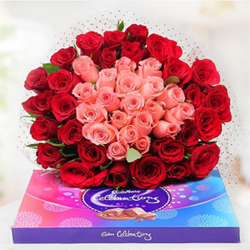 This Bunch consists of 50 Roses, 30 Red Roses forming the outer ring of bouquet and 20 Pink Roses forming the inner core. Together with this beautiful arrangement comes a cadbury celebrations pack of 118.4gms.