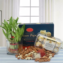 Two Layer Bamboo Plant Height 5 Inches approx.Soan Papdi 500gms Ferrero Rocher Chocolate 16 pcs. Almonds 100gms Cashews nuts 100gms