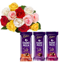 12 Mixed  roses bunch + 65 gms 3 Dairy silk chocolates