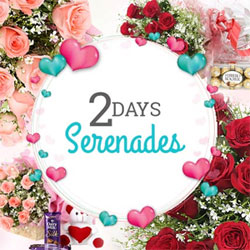 Your Gift Contains:  Day 1: Bunch of 12 Pink Roses, 2 Cadbury silk chocolates and 6 inches teddy bear. Day 2: Bunch of 12 Red Roses with 200grams Ferrero Rocher.