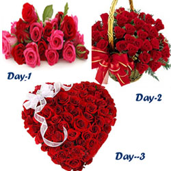 Your Gift Contains: Day 1 :12 Fresh Red Roses Flower Bunch  Day 2 :30 Red Roses Round Basket  Day 3 :60 Fresh Red Roses heart shape basket
