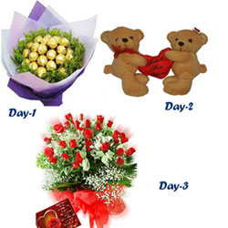 Day 1 : 16 Ferrero Rochers chocolates in Red Handmade Bouquet  Day 2 : A Couple of cute teddies, height 10ins  Day 3 :50 Fresh Red Roses Bunch