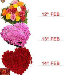 12th Feb (Day 1): 35 Mixed-color Roses in a heart-shaped basket  13th Feb (Day 2): 35 Pink Roses heart-shaped basket  14th Feb (Day 3): 35 Red Roses  heart-shaped basket