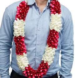 This is made with red and white rose and white pearls, prettily clustered together to form attractive garlands.