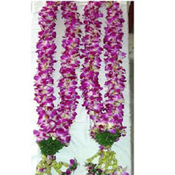 orchids clustered in the shape of lovely garlands is perfect for a special occasion like an engagement, marriage receptions or felicitations.