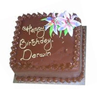 1/2kg CHOCOLATE CAKE