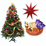 Christmas Hamper contains a tray filled with chocolates and dry fruits, a big paper star and a decorated Christmas tree 3 feet approx. Chocolates and dry fruits which comes with this tray are 3 Dairy Milk (19gm each), 6 pieces Ferrero Rocher (75 gm), 100 gms each of Kaju and Almond. Furthermore, the star and the Christmas tree give this gift hamper a Christmas look.