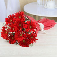 10 Red Gerberas, Tissue Paper Packing with ribbon bow, Flowers to Chennai