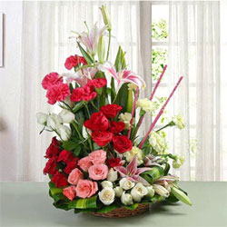 One life is perhaps not enough to let someone know how much they mean to you. Mixed Roses – 11 Red, 14 White & 6 Pink Mixed Carnations – 5 Red & 7 White pink Lilies – 6, Flowers to Chennai