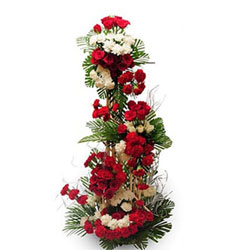Make their every moment memorable with this life size arrangement of 50 red and white roses and 50 red and white carnations 3 - 4 feet height approx, Flowers to Chennai