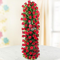 There is no flower that expresses true love as timelessly and as perfectly as the red rose. Send this long arrangement of 100 red roses to someone you love., Flowers to Chennai