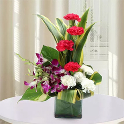 If love is a game, you must win and to aid you in this game we have a beautiful arrangement of red Carnations, white Carnations, purple Orchids, and Dracaena leaves