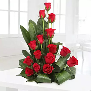 Beautiful basket arrangement of 20 red roses with draceane leaves and lots of fillers.