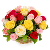24 Basket Arrangement of Mixed Color Roses to your loved ones, family and friends anytime, anywhere in india, Flowers to Bangalore