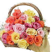 Send this wonderful basket of 40 multicolour Roses and make the occassion bright and colourful.