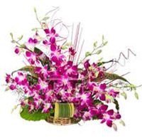 15 Orchids basket, Flowers to Bangalore