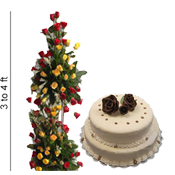 5kg 2step non pastry cake + 100 red and yellow roses 3-4 feet height basket