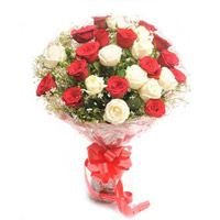 24 Gorgeous bouquet of two dozen sparkling red and white roses, make an extravagant statement of fashion.