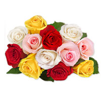 Charming bouquet of a 2 dozen assorted roses