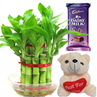 2 Layer Lucky, Bambo small silk chocolate & small teddy bear , Flowers to Chennai