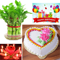 1kg Heart shape butter scotch Cake + Birthday Greeting card Birthday candle +Happiness is a gift that we are offering you and your dear ones through this Good Luck Bamboo plant.