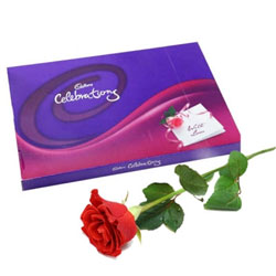 Cadbury Celebration Gift Pack : Assorted Cadbury Chocolates