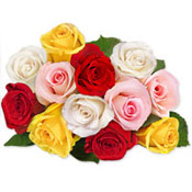 Bright 12 multi coloured roses in a bunch is all about unending happiness.