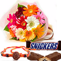 2 Snickers chocolates 12 MULTICOLOUR GERBERAS + Rakhi