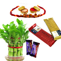 Lucky Bamboo With Cake,2layer Lucky bamboo with one Rakhi