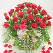 This flower arrangement of 30 roses has earned an apt name owing to the spectacularly arranged fresh red roses coupled with the gypsophila and greens. The ribbons that tie the flowers, greens and gypsophila together makes the arrangement more attractive