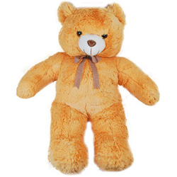 A huge Big teddy who can be a special friend to your loved ones in India. The Teddy has a knot round its neck which enhances its grandeur. <br>Height : 24 inches ( 2 feet approx)