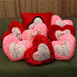 Emote your true feelings this valentine week with this special gift. The gift is loaded with love messages for each specific day, on red and pink color cushions. Celebrate each day of love with great joy this Valentine's week.