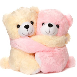 Love Pairs Couple Teddy Bear