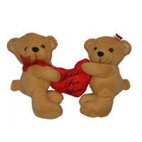 A Couple of cute teddies size 1 feet approx