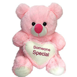 pink Teddy Bears are the most lovable soft toys 14 inchs