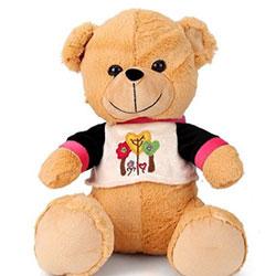 Funzoo Teddy Bear Soft Toy Brown - 20cms