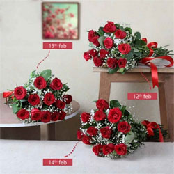 Colour of Flower: Red