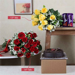 Day-1Bunch Of 10 Yellow Roses+Cadbury Dairy Milk Chocolate silk each one 65gms 