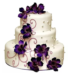 If you are looking for a cake for wedding, reception or anniversary then this 3 tier cake is a perfect choice. Its available in two flavours vanilla or Butterscotch