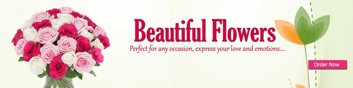 Order Flowers to Panchkula